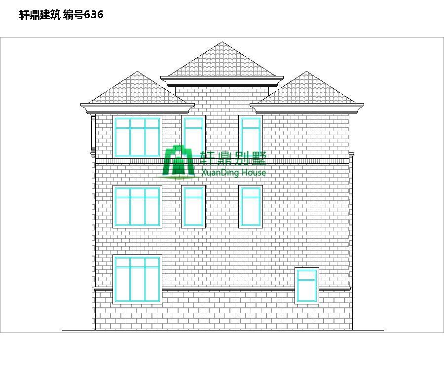 三层欧式自建别墅设计图2.jpg
